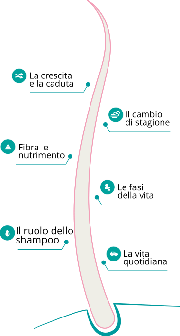 Il capello: il ruolo dello shampoo